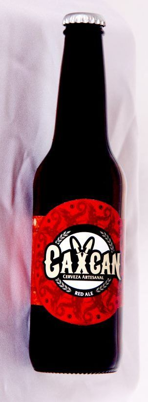 Zacatecas: Tierra de deliciosas cervezas artesanales